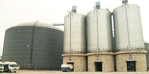10000 Ton Cement Storage Steel Silo
